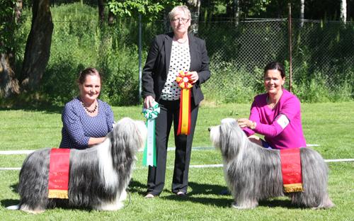BIM Lärkängen's Aiming for the Stars BIR Duchess Montebello Smartness