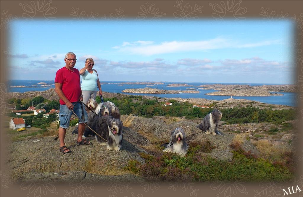 Mona och Perry med hundarna Hebbe, Ben, Nessie, Happy, Sammeth, Barney och Mollie